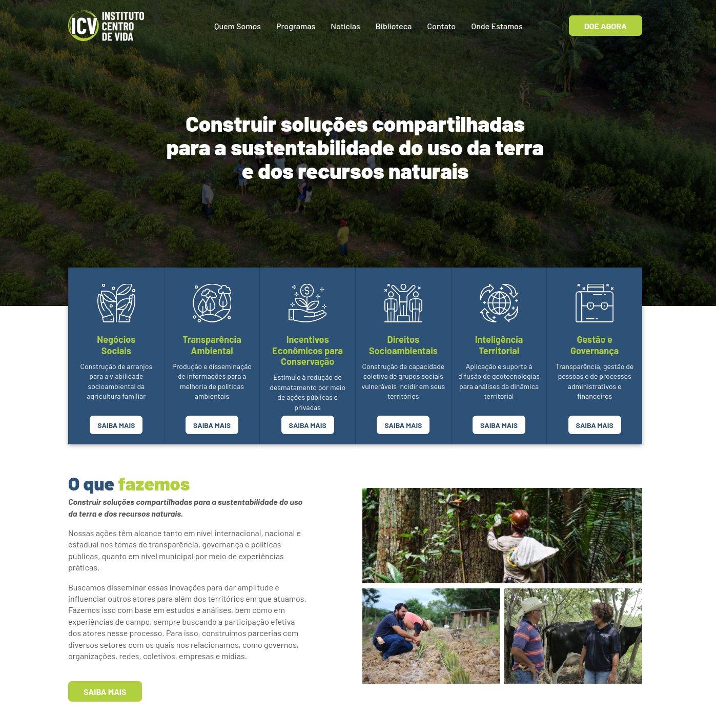 imagem da capa do site do ICV